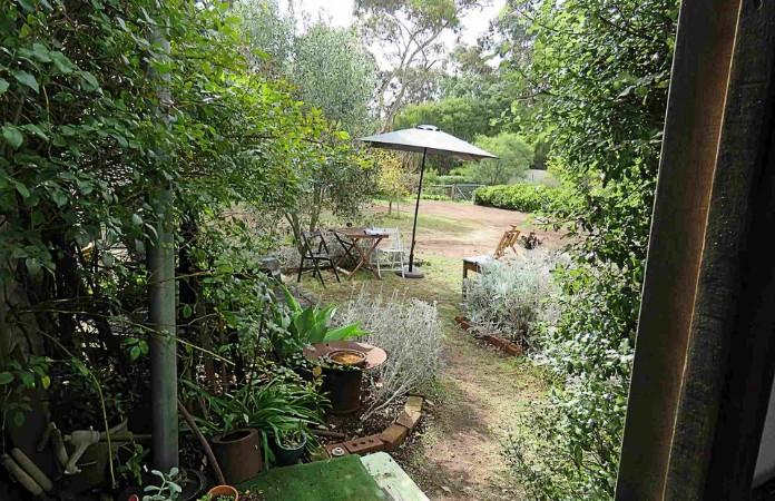 Fi Wilkie's studio garden