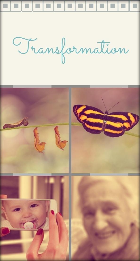 transformation Pinterest collage